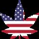 Baltimore MD Medical Marijuana